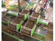 miedema SU系列清选分级设备视频