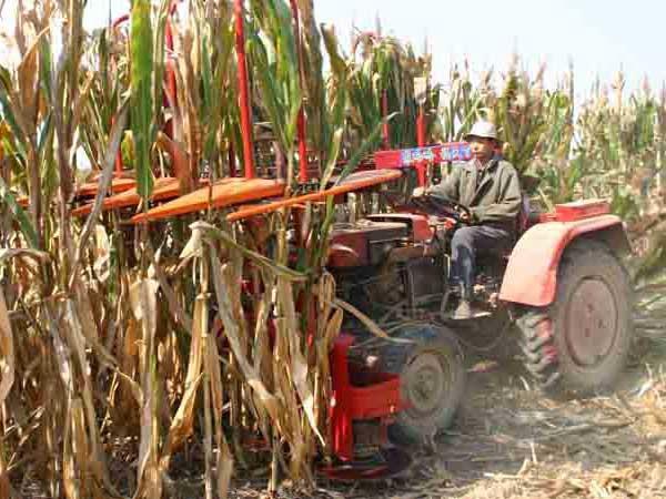 4G 2.2C玉米秸秆收割机四行玉米秸秆收割机