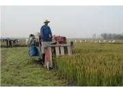湖北举办稻麦全程机械化观摩座谈会