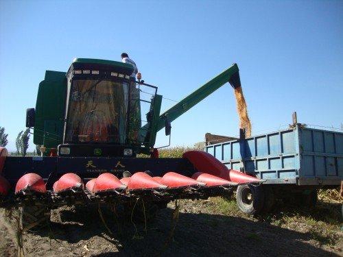 察布查尔农民购置约翰迪尔C110玉米收获机增收致富