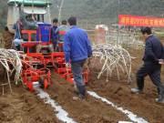 广西靖西县召开2013年甘蔗机械化种植现场会
