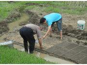 宁国:农机技术服务到田间地头