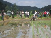 宁化安远举办水稻机插秧示范推广现场会