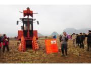 广西召开甘蔗生产全程机械化技术现场培训会