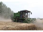 奇瑞重工谷王绿色机收成为麦收新时尚