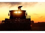 高科技农机装备没有解放农民 反而成了噩梦