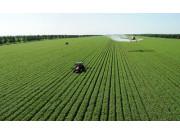 国务院下半年农业工作路线图出炉 再明确推进现代化