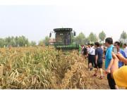 山东宁联召开谷子、玉米新产品推介会暨现场演示会