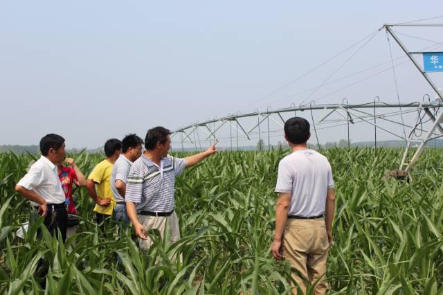 太和县三塔_s308工程桥涵结构图