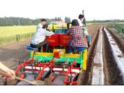 璞盛2CMMF-2A马铃薯种植机双垄单行作业视频