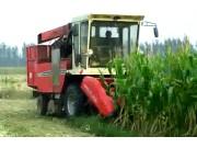 中农博远4YZ-3B玉米收获机作业视频