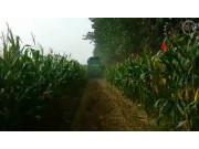 时风玉米收割机1作业视频