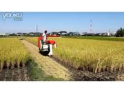 久保田R1-131G收割机作业视频