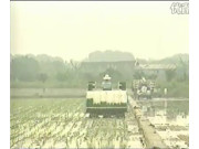广东科利亚—插秧机系列作业视频