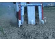 广东科利亚4LBZ系列半喂入联合收割机作业视频
