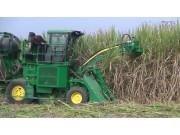 约翰迪尔4ZLQ-1甘蔗联合收获机作业视频
