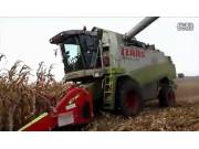 科乐收440玉米收割机作业视频