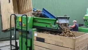 miedema AKV系列马铃薯装箱设备