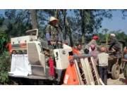 云南峨山:高粱丰收 联合收割机来帮忙
