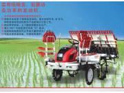 RGO-6水稻插秧机