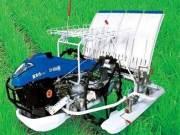 五菱柳机2Z-430手扶步进式水稻插秧机