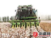 新疆进口采棉机量创新高 远超前12年进口总量