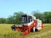雷沃谷神DF290A履带式水稻收割机
