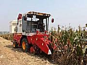 雷沃谷神4YZ-3A(CE03)玉米收割机