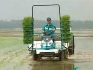 久保田NSPU-68C乘坐式高速水稻插秧机视频