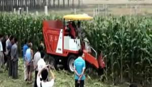 河北沃丰机械有限公司两行玉米收割机视频