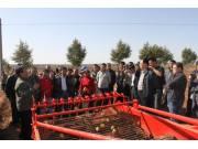 呼和浩特市:召开2013年全市马铃薯机械化收获现场演示会