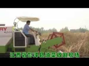 谷王系列小麦收割机作业视频