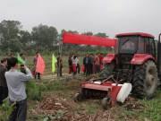 钦州力顺公司在广西浦北举行蕉杆粉碎还田机现场演示