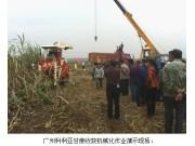 广西贵港在西江农场举办甘蔗生产全程机械化演示现场会