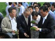 農業部副部長高鴻賓駕車收割輝山紫花苜蓿