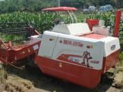 雷沃谷神RC水稻机在深泥脚的小稻田里大显身手