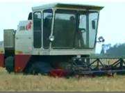 沃得麦霸收割机施工现场