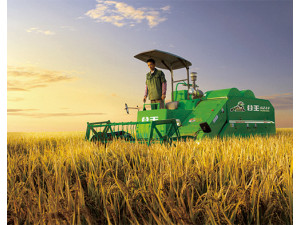 推薦!谷王系列水稻收割機視頻 視覺享受