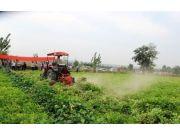 河南灵宝市农机局举办花生机械化收获现场演示会