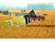 辽宁水稻生产全程机械化促农民增收21.5亿