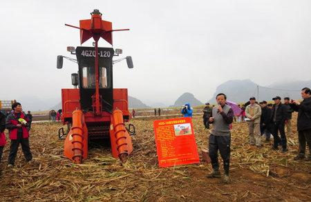 广西召开甘蔗生产机械化现场培训会