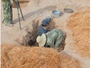 二千多年前的小麦出土将为西汉的农业解密做铺垫