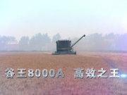 谷王8000A联合收割机宣传片