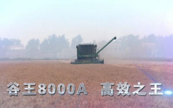 谷王8000A聯合收割機宣傳片