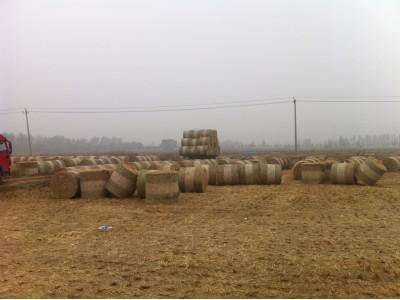 水稻秸秆草捆