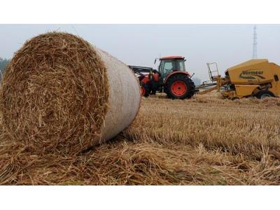小麦秸秆草捆