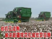 解决新疆棉花机械收获问题时机已成熟