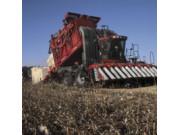 研究表明:凯斯ME625采棉机收获成本最低