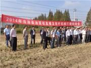 安徽省当涂县召开油菜机直播和秸杆机械打捆现场会