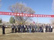 阿拉善盟:召開機械化棉花收獲現場觀摩會